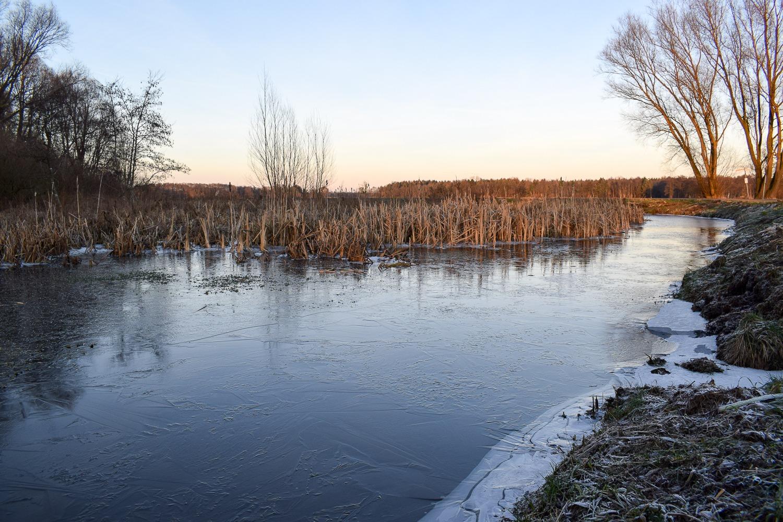 Bornhorst – Online-17
