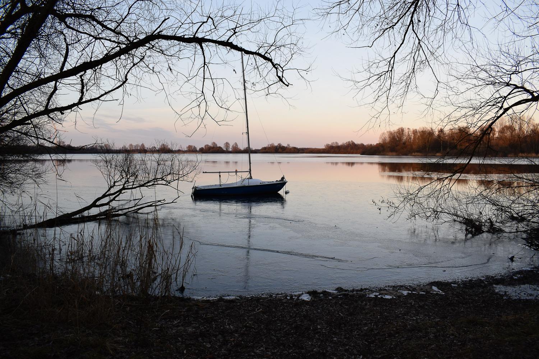 Bornhorst – Online-20