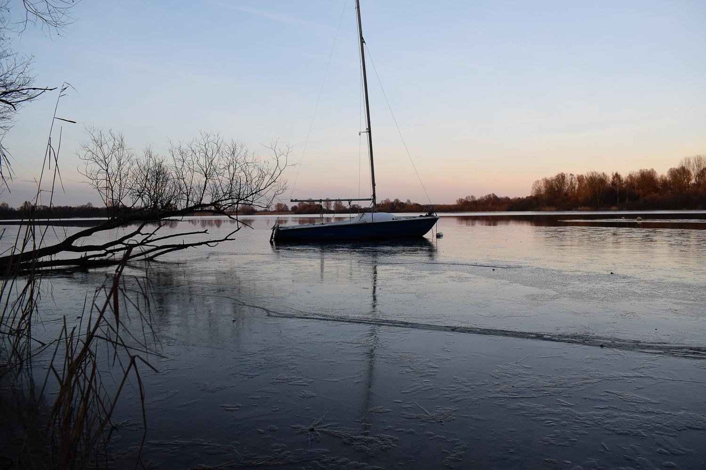 Bornhorst – Online-21