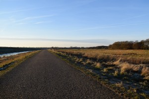 Bornhorst - Online-2